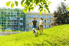 Hundehotel - Umgebungsschwerpunkt: Strand - Gotthard Therme Hotel & Conference****