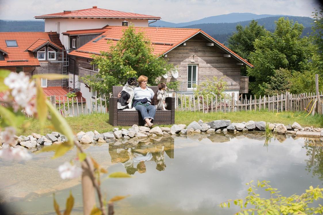 Landhotel Haus Waldeck S