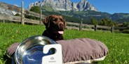 Hundehotel - Pools: Sportbecken - Bio-Hotel Stanglwirt