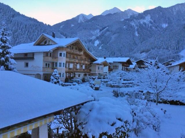 Apart hotel austria hotel f r den urlaub mit hund in for Hotel auf juist mit hund